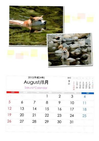 8月さくらカレンダーB