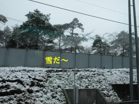 雪だ・・・