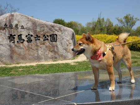 有馬富士公園~六華