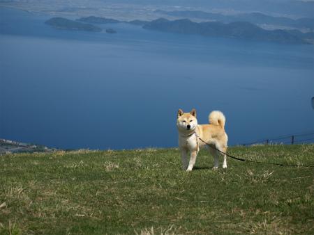 琵琶湖をバックに♪