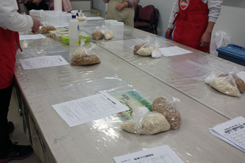 味噌作り講座 (1)