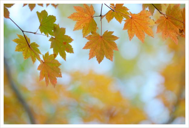 2013-11-19-08.jpg