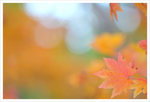 2013-11-19-09.jpg