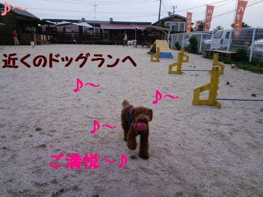 2010_05225、22001ぶろぐ