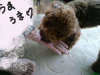 2010_07137月13日0009