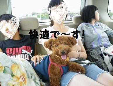 2010_0815浅草0011