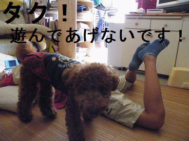 2010_09012010.90046