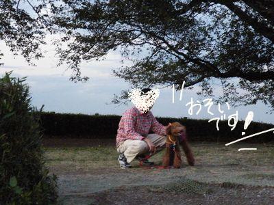 2010_110311月2日0013
