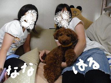 2010_08240022.jpg