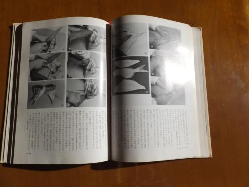 DSCF9337+1.jpg