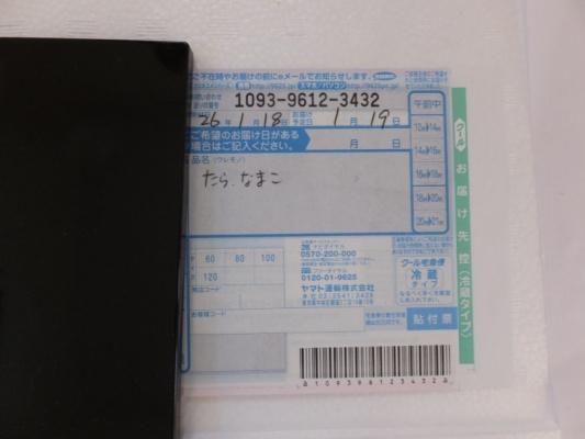 DSCF9863+1.jpg