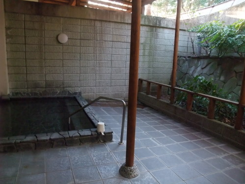 2011_0415hakone0028.jpg
