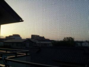 夜明け_convert_20130518190123