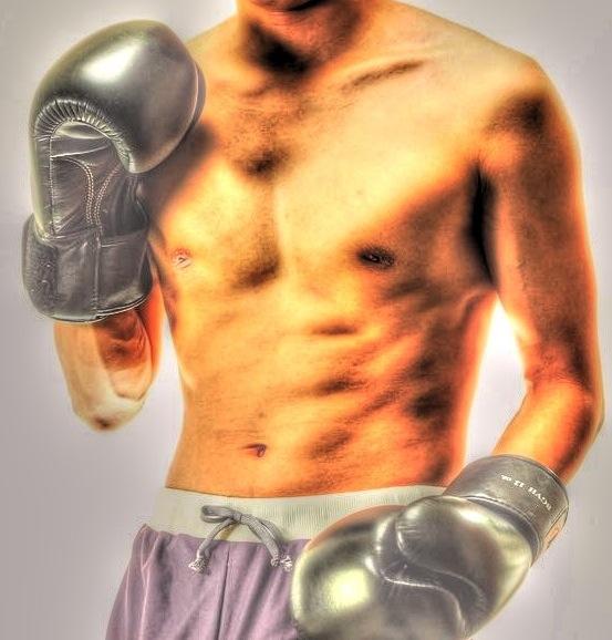 HDR_boxer02_ver1.jpg