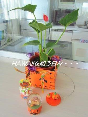 IMG_1443[1]_convert_20121019134723