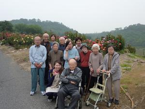 種松山バラ1