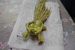 亀作り11