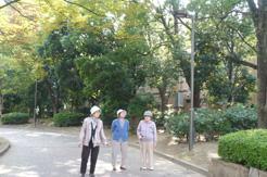 市役所散歩2