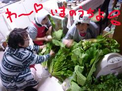 野菜だらけ2