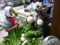 野菜だらけ6