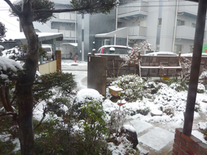 季節はずれの積雪