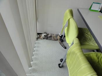横たわる??