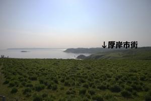 ayanegahara_akkesi.jpg