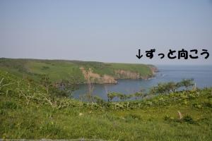 for_hamanaka.jpg