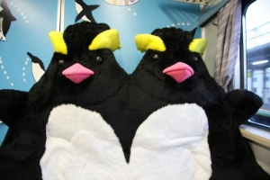 penguinseat.jpg