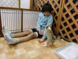 2010-4-1youchien4.jpg