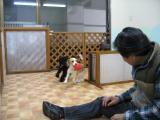 2010-4-9youchien19.jpg