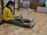 2010-4-9youchien2.jpg