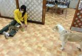 2010-4-9youchien7.jpg