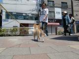 2010-5-13youchien11.jpg