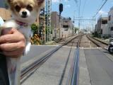 2010-5-13youchien5.jpg
