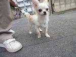 itakura1006_20100527185156.jpg