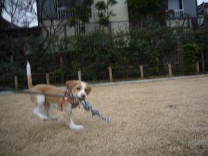 itakura241_20100217171530.jpg