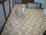 itakura367_20100309225957.jpg
