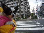 itakura403_20100311171229.jpg