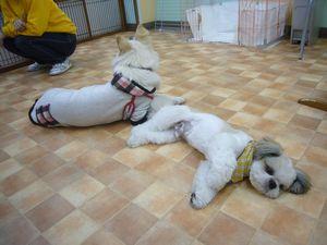 itakura406_20100314215652.jpg