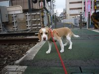 itakura443_20100321161302.jpg