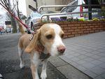 itakura457_20100321161949.jpg