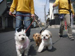 itakura482_20100322214301.jpg