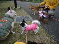 itakura596_20100404143611.jpg