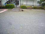 itakura788_20100421094257.jpg