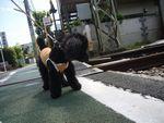 itakura818_20100427002321.jpg