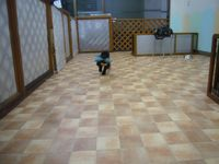 itakura823_20100427002349.jpg