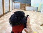 itakura845_20100430171228.jpg