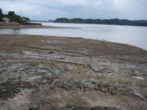 プライベートビーチ2