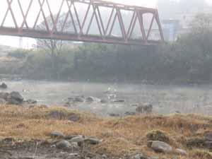球磨川の朝霧